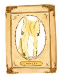 charleyI